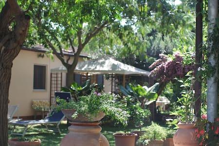 Casa a 3km da Baratti con Giardino - House