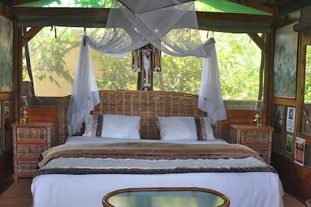 Enduduzweni Tree House - Cabane dans les arbres