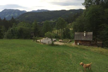Holzknechthütte - Lunz am See - Chalet
