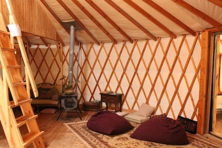 cozy panoramic yurt near  jerusalem - Jurtta