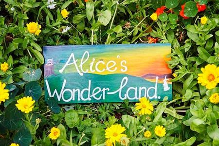 Alice's Wonderland - Bed & Breakfast