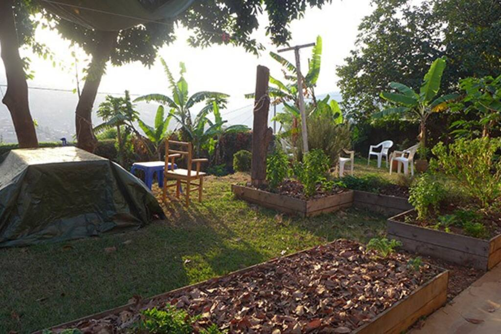 Garden beds in the backyard along with outdoor table. Beautiful view of Mount Kigali.