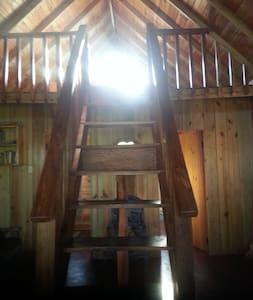 Shiloh Cabin 1 - Oracabessa - Loft