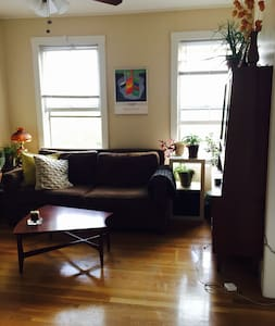 Clean, comfy, and convenient - Somerville - Apartment
