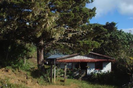 Mountain cabin - Cerro Kamuk - Tres Colinas de Buenos Aires - Blockhütte