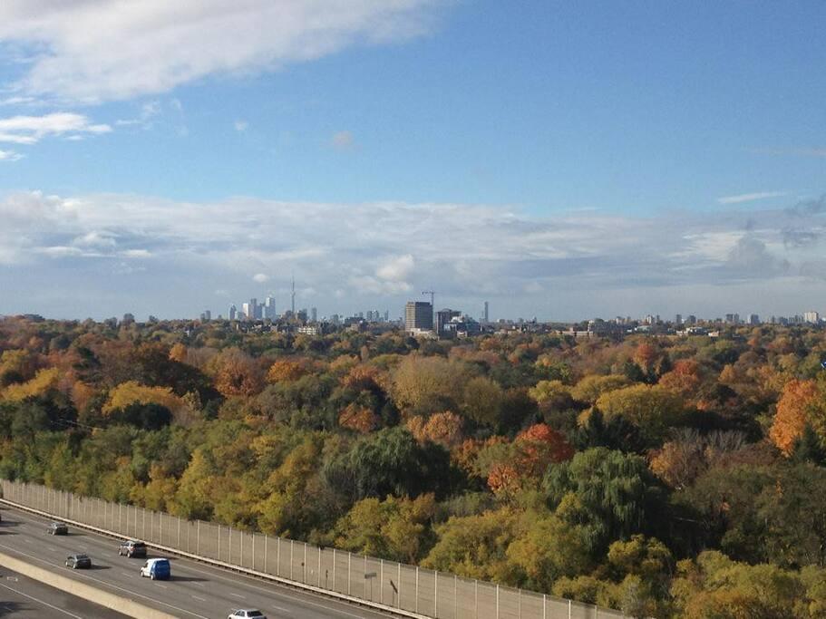 Greater Toronto Area CONDO