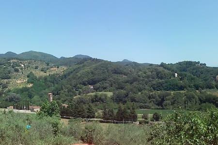 Villino con grande giardino - Ronta