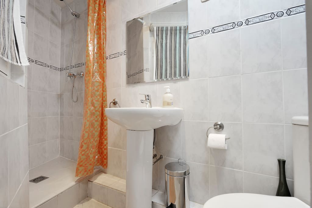 Shower in the bathroom and hairdryer