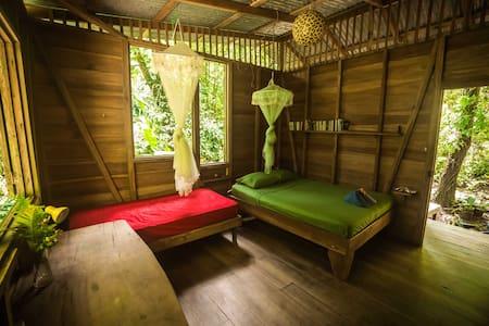 Homestay in charming jungle cabin - Casa na árvore