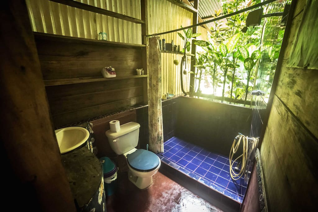 Shared jungle bathroom downstairs - make little rainbows while having your morning shower