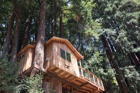 (Star)   Redwood Treehouse