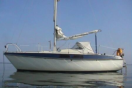 Sail Etap22 by Empee op Grevelingen - Hajó