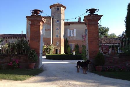 Château de Thégra - Balma - Bed & Breakfast