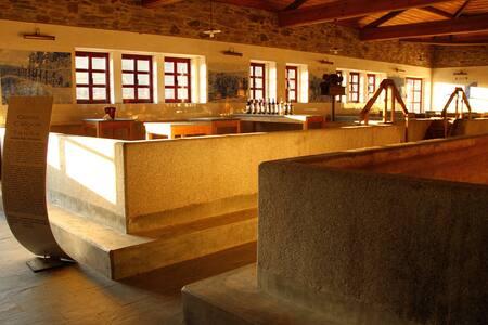 Casa Calços do Tanha B&B - Douro - Wikt i opierunek