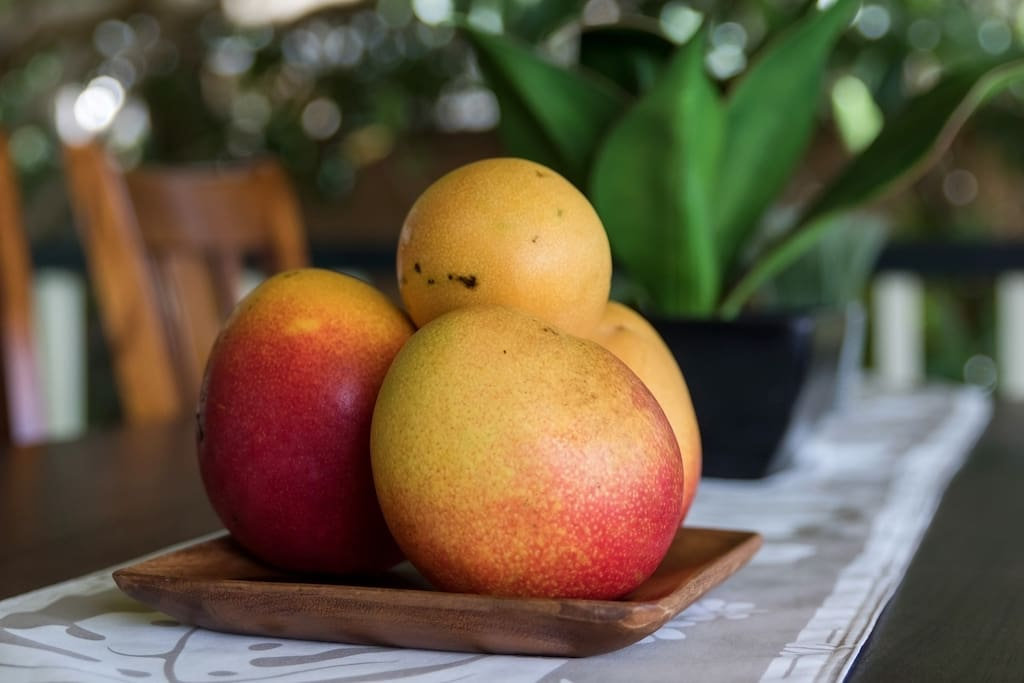 Actual mangos from the home. (Summer months only)