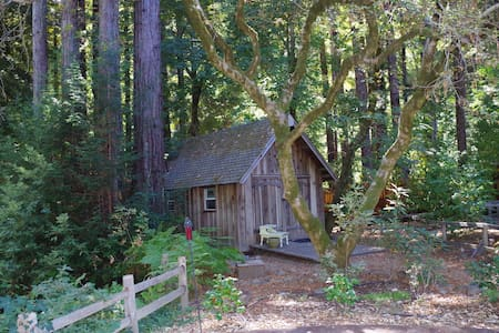 Creekside Redwood Cabin Santa Cruz