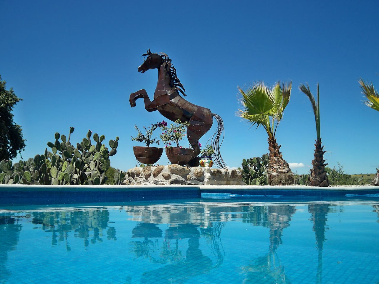 Come enjoy our solar-heated infinity pool...