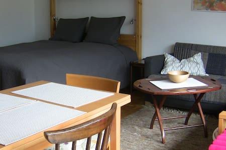 Neat 1 Room Apt - Bad Hofgastein - Byt
