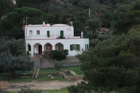 Belissima villa in riva al mare 1°p - Vila