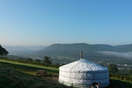 Yurt Rhiannon, North Wales - Llanddoged
