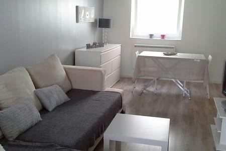 Bel appartement centre Colmar - Colmar