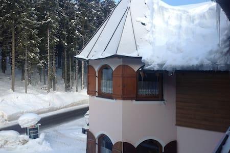 Carezza - Dolomiti super ski - Nova Levante - Apartment