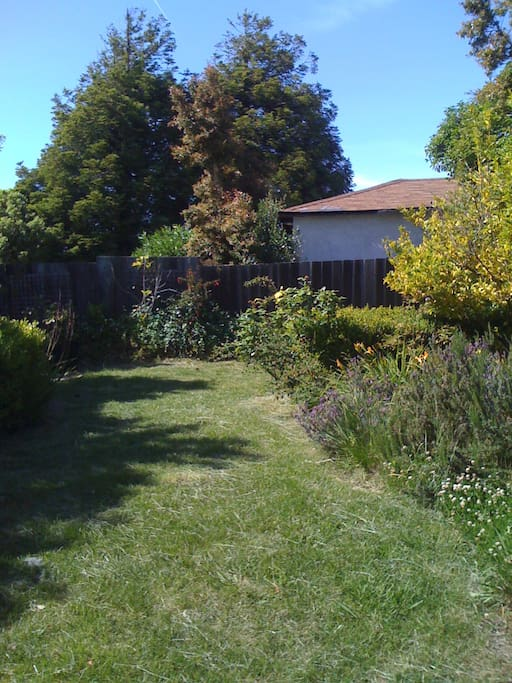 Large, private garden. Access directly from the rental room (via glass sliding door).