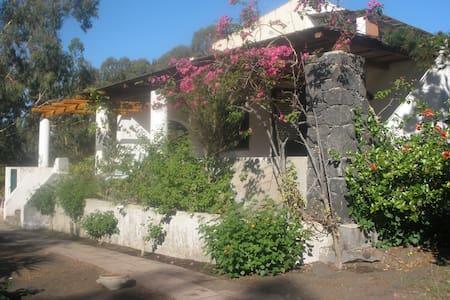 Casa fronte mare immersa nel verde - Vulcano Bleu - House