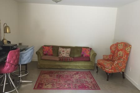 Couch in Beautiful home, walk to SX - Austin - House