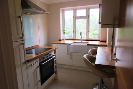 2 bed flat Guildford town centre