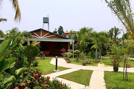 花园民宿玫瑰房 Garden Homestay: Rose 3 - Ház