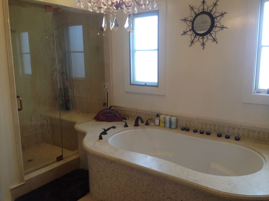 Amazing bathroom with standing shower and separate jacuzzi tub