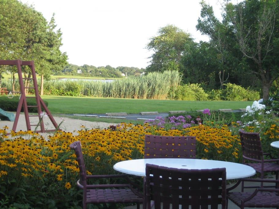 View of our picnic area
