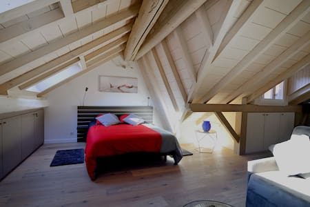 The Attic  - Appartement atypique en vieille ville - Annecy