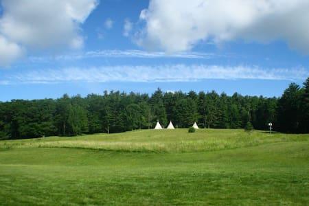 Gorgeous Hilltop Tipi - Tipi (indián sátor)