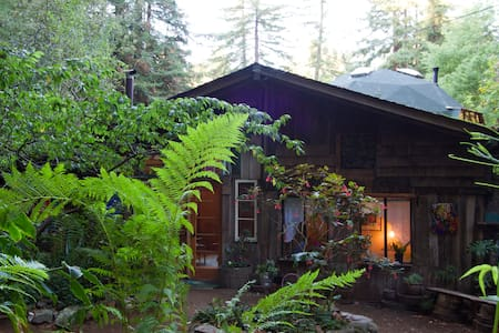 Calla Lilly Cottage in the Redwoods - Carmel - Casa