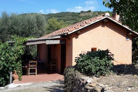 Monte Argentario - Porto S.Stefano - Porto Santo Stefano - House