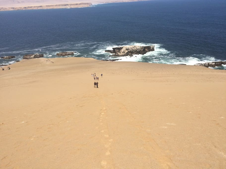 This is part of my  tour in the national park in paracas I am the only one who do this