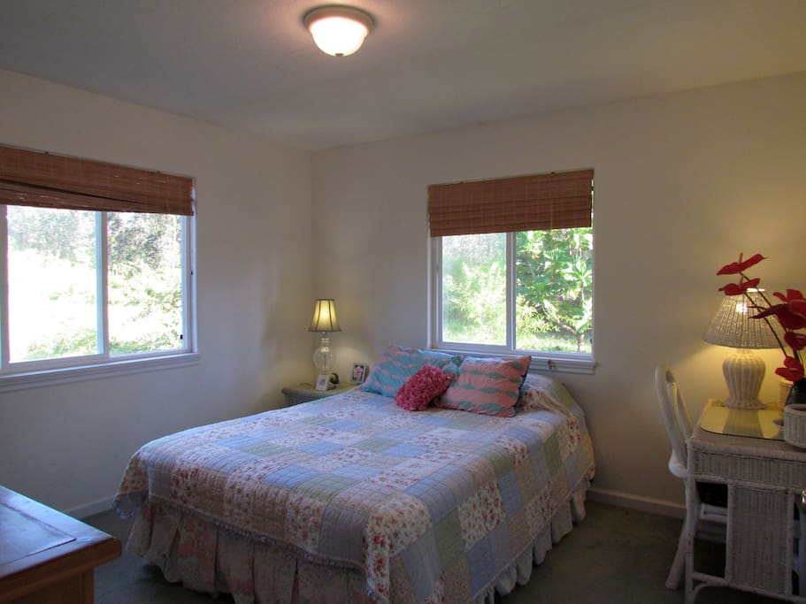 Second Bedroom With Closet & Large Dressor