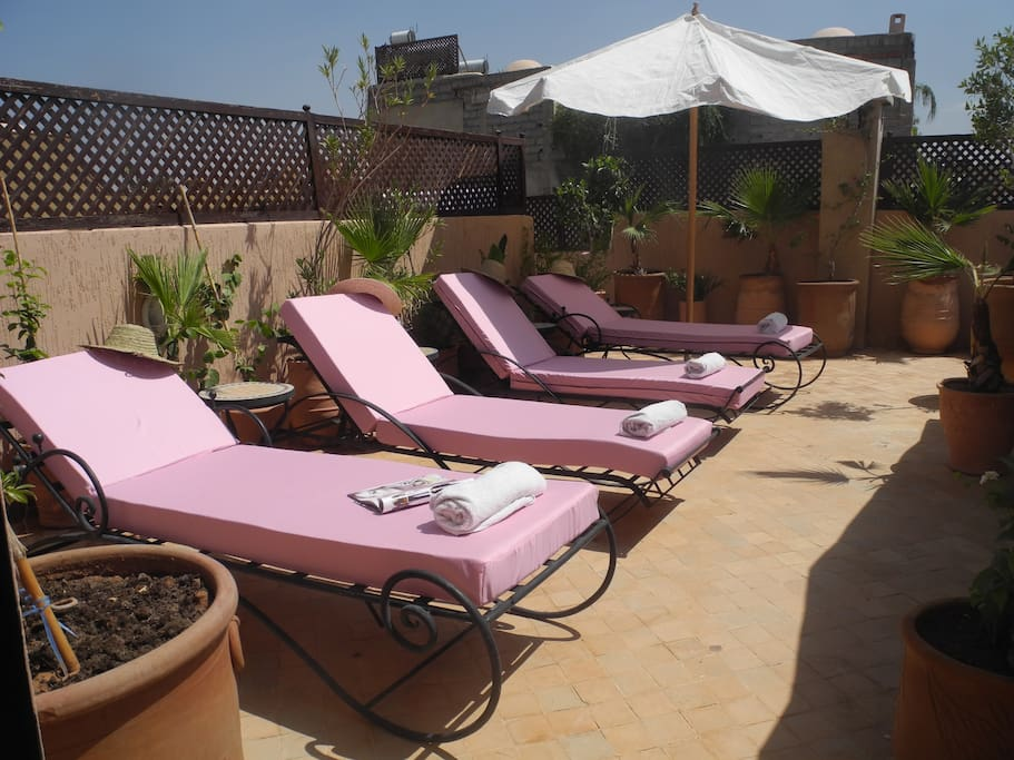 Enjoy the sunshine on our comfortable sun loungers.