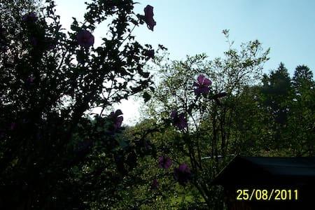 Zimmer zum Sonnenaufgang - Dom