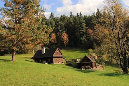 A cottage in quiet, secluded woods - Hutisko-Solanec - Blockhütte