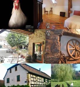 Chambres d'hôtes à la ferme - House