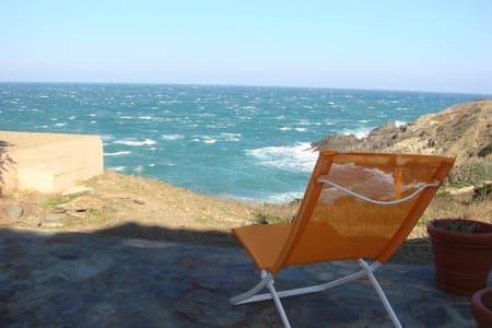 Nice flat & terrace facing the sea