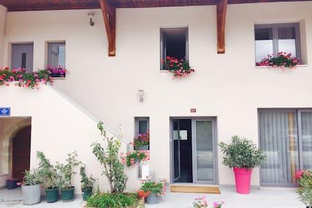 Maison moderne en Haute Savoie - Bassy - House
