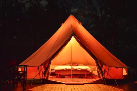 Luxury Camping Pinnacle Eco Retreat - Pumpenbil - Tent