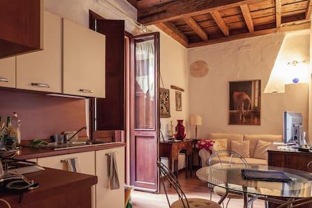 Casa delle Volte in the city centre - Ferrara - Lejlighed