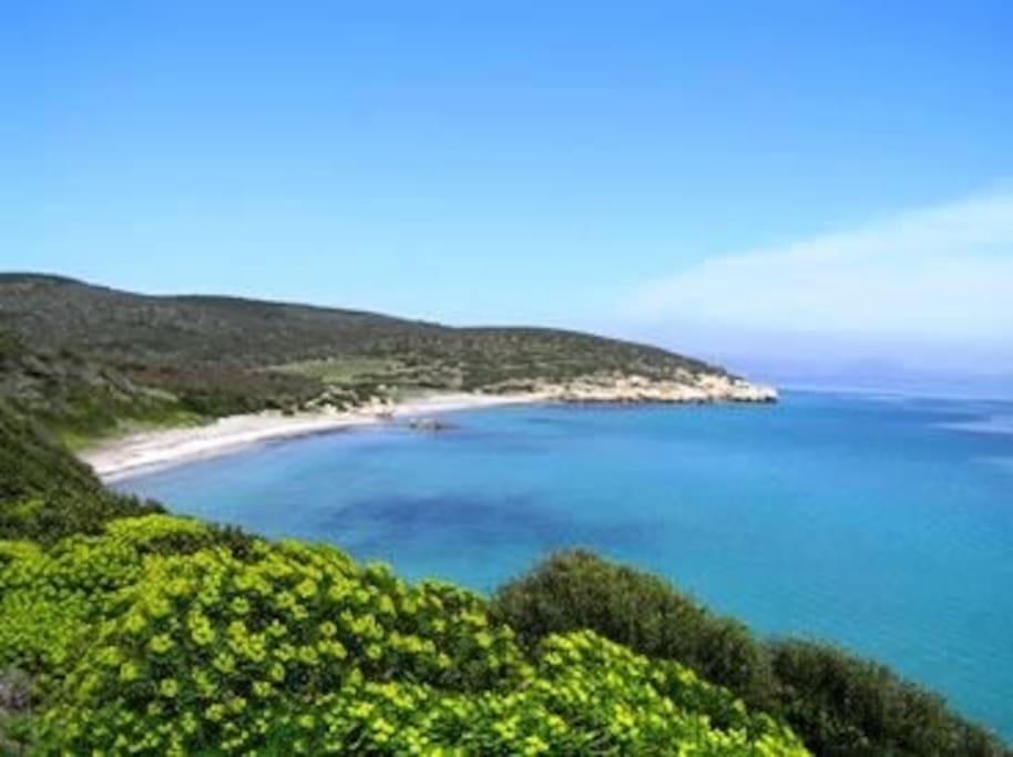 Spiaggia Coeguaddus
