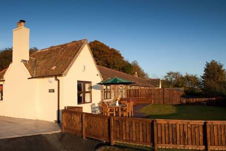 Rowantree Cottage 95740 - Cupar - Chalet