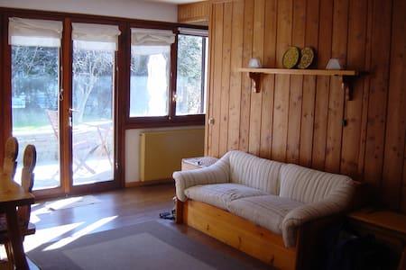 Charming apartment in Gressoney SJ - Gressoney-Saint-Jean
